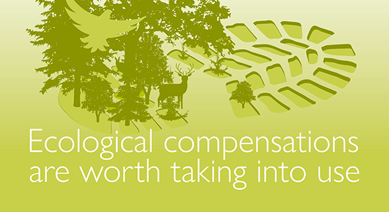 SYKE Policy Brief: Ecological compensation needs to be used to secure biodiversity