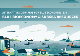Alternative scenarios for blue bioeconomy and subsea resources in the Gulf of Finland and Archipelago Sea